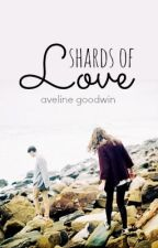 Shards of Love by northlings