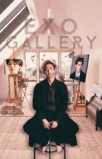 EXO Gallery by KimZarah