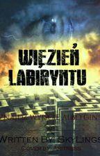 Więzień labiryntu- Chwilowo Zawieszone by SkyLings