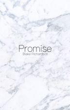 Promise//Blake Richardson by -Megsm_
