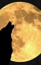 30 důvodů proč je moje kámoška vlkodlak by Deni00009