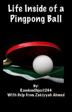 Life Inside of a Pingpong Ball by RandomObject244