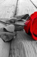Uma rosa para o meu amor- (Camila/you) by cabello2505h