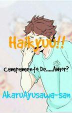 [Haikyuu!!] Campamento De.....Amor?  by AkaruAyusawa-san