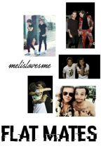 flat mates. larry stylinson. by blxcktomlinson