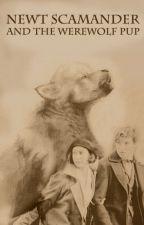 Newt Scamander and the Werewolf Pup by Pengiwen