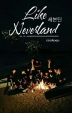 Like Neverland ❁Seventeen ft Song Triplets❁ by nimkoes-