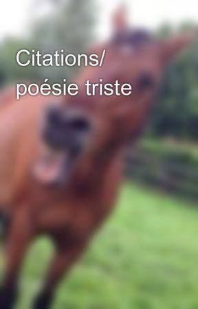 Citations Poésie Triste Definition De Petit Frère