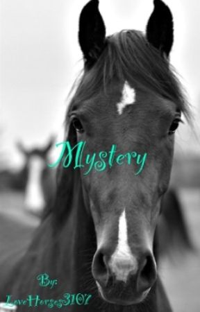 Mystery by _itsme_lovehorses_