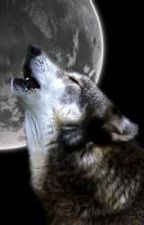 Loving the Wolf by Awesomeness4040
