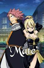 'Mate' (NaLu/NatsuxLucy) by 666reddog