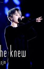 he knew || pjm by stripesjimin
