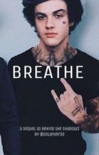 BREATHE. || [sequel to Behind The Shadows.] by Dolanverse