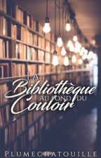 La Bibliothèque au fond du couloir by plumechatouille
