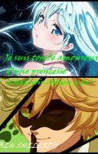 Je suis tombé amoureux de toi ma princesse (Chat noir/Adrien y tu) by BluShelerdy