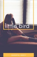 little bird. ↠ p.l. | ✔️ by the-wallflower-girl