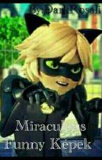 Miraculous funny képek by miraculoushjx