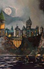 Tổng hợp Harry Potter 2 (ĐN) by biubiunah