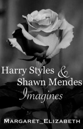 Harry Styles & Shawn Mendes Imagines by Margaret_Elizabeth