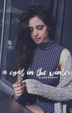 [english] a coat in the winter; camren by polaroidslauren