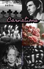 Carnations by johannaistrash