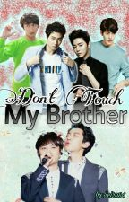 Don't Touch MY BROTHER by seira84