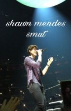 Shawn Mendes smut by -shawnshoe