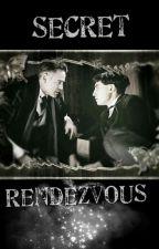 Secret Rendezvous by UniqueSnowflake6