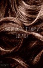 Coup de foudre (et coup de ciseaux) - [OS Larry Stylinson] by EmiiCherry