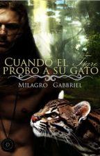 Cuando el tigre probo a su gato by Samanta_dani