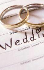 The Wedding by _dadummy