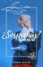 ¿Sospechas? ¡Claro que no! ; YoonSeok by MinYoongiSOPE