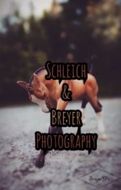 My Schleich and Breyer photos by Breyer27