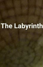 The Labyrinth  by Alanna18466