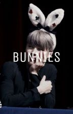 bunnies | kookmin by hobifilia