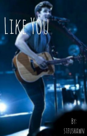 Like You/Shawn Mendes by stfushawn