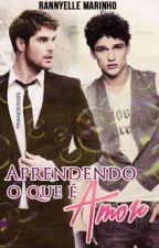 Aprendendo O Que É O Amor (Romance Gay) by RannyelleMarinho