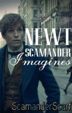 NEWT SCAMANDER IMAGINES by ScamanderScarf
