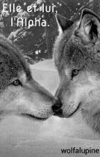 Elle et lui, l'Alpha. by wolfalupine