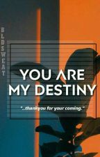 You Are My Destiny by bldsweat