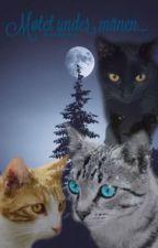 Møtet under månen (ferdig) by Tigerhjerte