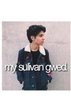 my sulivan gwed. by HagarMsr
