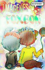 Imágenes FoxBon/Bonxy.|FNAFHS  by Bikipandy