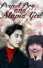Perfect Boy and Stupid Girl by BabyGlade