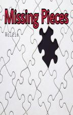 Missing Pieces [Ignis Scientia] by MasterRanger