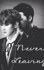 Never Leaving [Sebaek Fanfiction] by whatisanexo