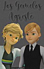 Los gemelos Agreste. (Adrien vs Félix). {TERMINADA} by lafresa_sartorius