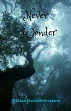 Never Wonder (NaNoWriMo 2013) by BlueBoxDreams