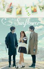 Sunflower by TheK2_