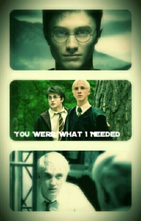 You Were What I Needed [Drarry Fanfiction]  by SepticGirl88